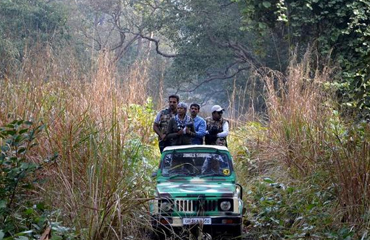 dudhwa jeep safari India
